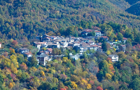 Village of Nespolo